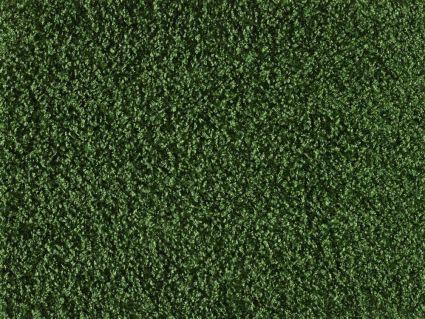 SPARKLING 2.0 -  221 Grass